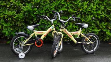 Vélo 16pouces 2.JPG