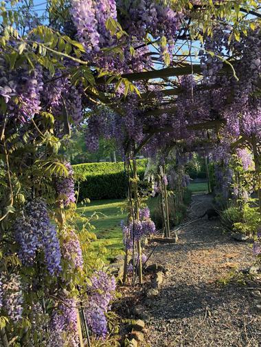 moutiers-sous-chantemerle-chambre-dhotes-a-loree-du-bois-jardin.jpg