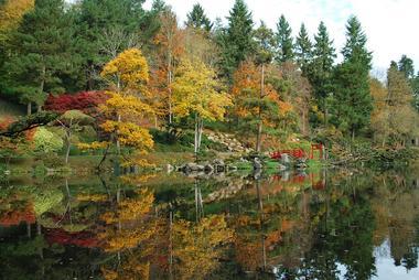 maulevrier-parc oriental-automne1.JPG
