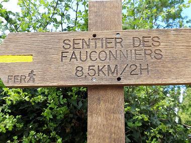 Fauconniers1 web.jpg