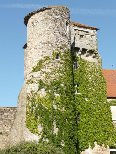 Tour de la Maison-Dieu - Montmorillon ©Béatrice Guyonnet (1).jpg