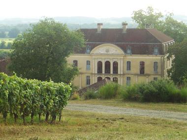 2. domaine viticole.jpg