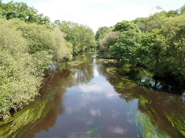 Rivière Ellé .JPG
