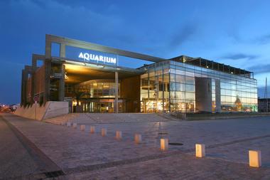 batimentlanuit(c)AquariumLaRochelleSAS.jpg