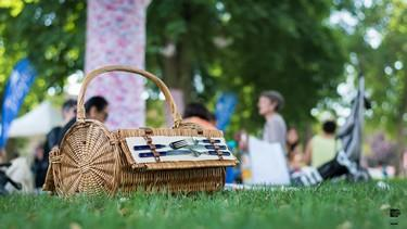 PIC NIC © frederic lopez