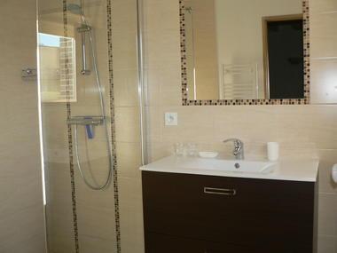 gite-fontaines-nogent-seine-salledeau-douche-italienne.JPG