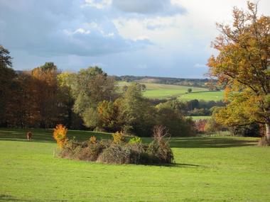 le-pin-les-roches-blanches-le-pavillon-paysage.jpg