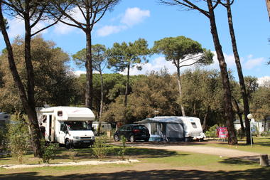 Camping_la_grainetiere_ile_de_re (18).JPG
