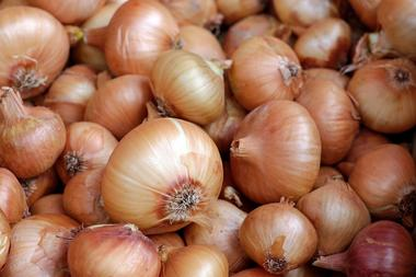 onions-1397037_1920.jpg