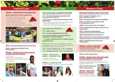programme fête des goyaviers 2017 (2).jpg