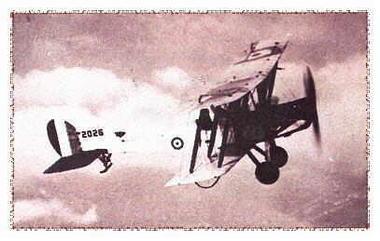 Bataille de la crete de vimy.jpg