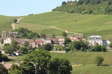 Mercurey-vins-vignes-paysages-OT (93).JPG