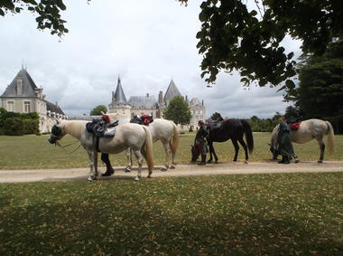 Ferme équestre En-lo - Saint Germain - ©EnLo (1).JPG