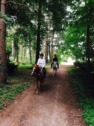 Poney_club_Centre_equestre_La_Roche_Posay_Yzeures_sur_Creuse (2).jpg