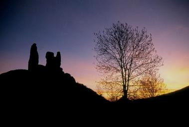 16- Arbre et  ruines de Montaillou 300 dpi1 - copie.jpg