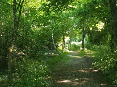 Jardins de la Clouère - Usson du Poitou ©OTVG (6).jpg