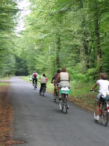vélo route de campagne - photo OT Blois.JPG
