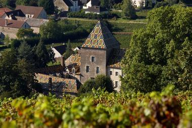 Les tuiles vernissées du Chateau Philippe le Hardi©Image&Associés