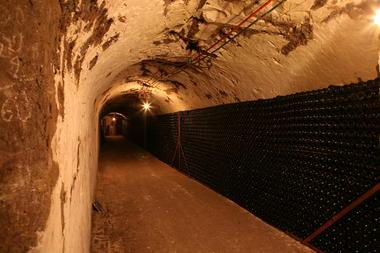 Champagne Cellar 2.JPG