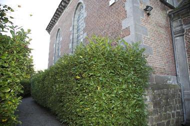 chapelle tre dame de bon vouloir-facade externe.jpg