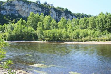 ENS Floirac. 2 la Dordogne, la falaise.jpg