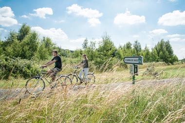 camping-sites-et-paysages-les-saules-à-cheverny-loire-valley-les-pistes-cyclables-au-camping-sites-et-paysages-les-saules-à-cheverny.jpg