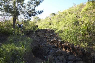 Le chemin qui mène au début de la canalisation serpente à travers les champs de cannes. Très détérioré par le ravinement des eaux, il est impraticable pour les voitures.