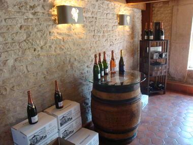 La France Secrete a velo - Champagne Nicolo (11).JPG
