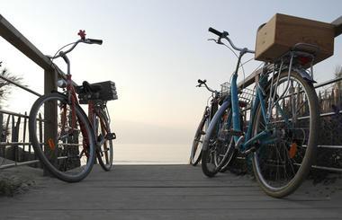 Cycles-N-Ile-de-Ré.jpg