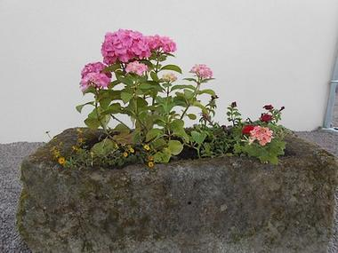 mauleon-gitesdespres5pax-fleurs-sit.jpg