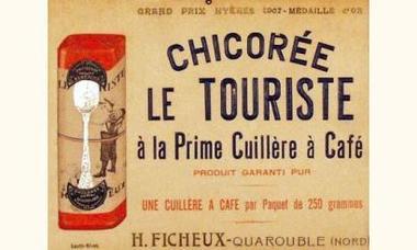 Chicorée-Touriste Ficheux-Quarouble.jpg