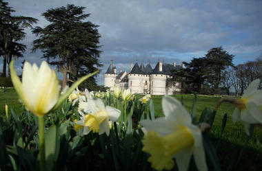 Blois I Chambord