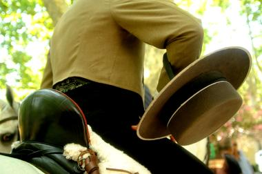 Rencontres Equestres6.jpg