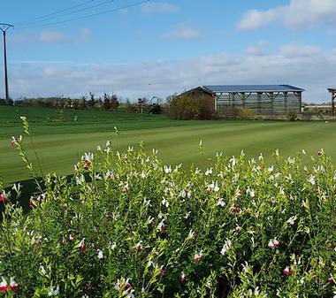 bressuire-golf-sit.jpg