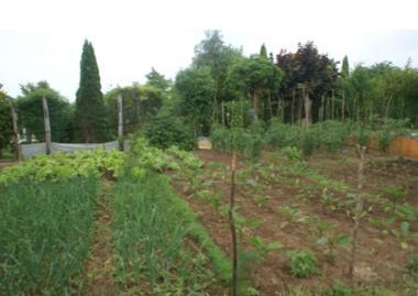 Jardins Nogent.jpg