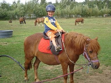 geff roulottes-balade poney3-sit.jpg