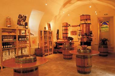 Dégustation vins, Floc et Armagnac du sud-ouest