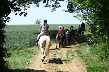 Collection Tourisme Gers/Les Ecuries d'Armagnac