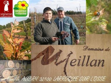 Domaine de Meillan à Larroque sur l'Osse