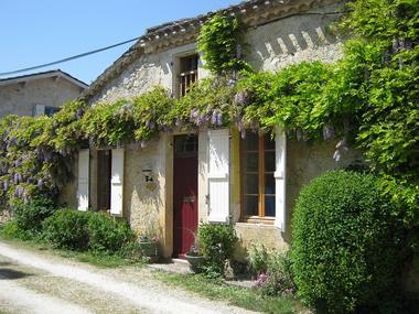 Collection Tourisme Gers/Le Tilleul