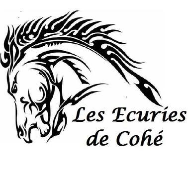 Collection Tourisme Gers/Les écuries de Cohé