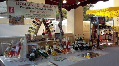 Collection Tourisme Gers/Domaine de Meillan/S. Aubry