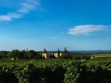 Vignoble Armagnac Gascogne - Domaine de la Poste