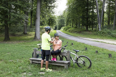 A vélo en forêt de Retz
