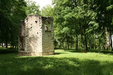 Bois Belleau (3)
