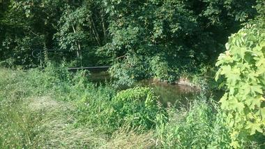 promenade au bord de l'Omignon derrière notre propriété