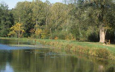 Etang de Vauclair < Bouconville-Vauclair < Aisne < Picardie