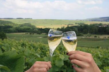 la Chayotte : gite et Champagne
