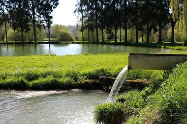 Étang des sources < Malzy < Thiérache < Aisne < Hauts-de-France