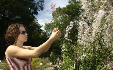Jardin de Vauclair_Fleurs_femme < Bouconville-Vauclair < Aisne < Picardie